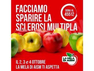 Da venerdì a domenica l'Aism vende mele nell'Albese per sostenere la lotta contro la sclerosi multipla 1
