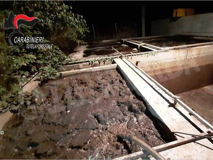 Impianto di macellazione sversava i reflui in un canale irriguo
