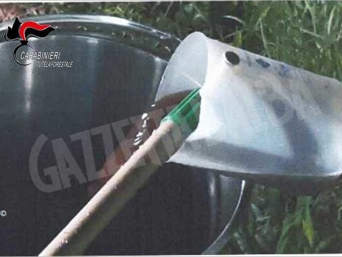 Impianto di macellazione sversava i reflui in un canale irriguo 2