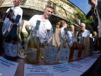 Una domenica alla scoperta delle distillerie con Piemonte grappa 2