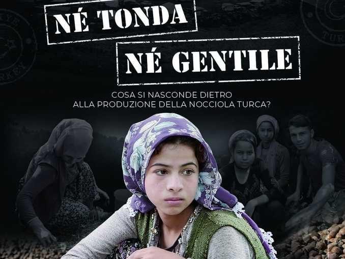 Né Tonda né Gentile il documentario di Coldiretti per scoprire la verità sulle nocciole turche
