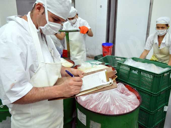 industria alimentare repertorio