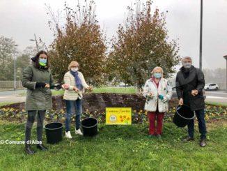 Messer tulipano di Pralormo dona tremila nuovi bulbi per le aiuole di Alba