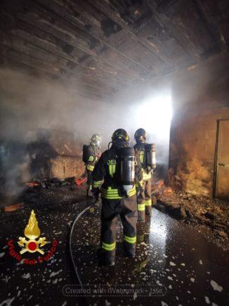 Incendio nella notte a Diano d'Alba, a fuoco una legnaia 1
