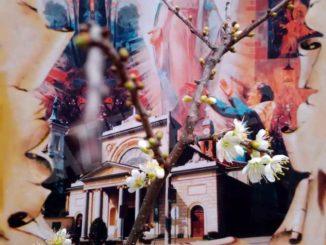 Da sabato 14 novembre alla Madonna dei fiori si celebra nella cripta