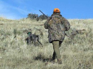 Libera caccia: quando arriveranno le risposte del Governo?