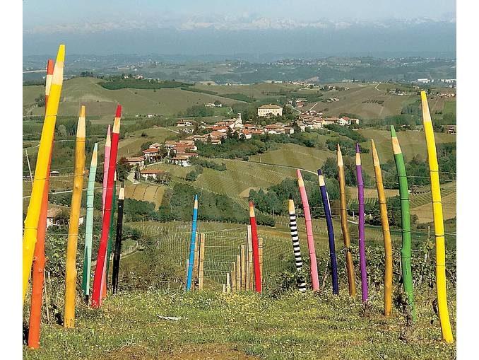 Coazzolo: il paese dove l'arte spunta in mezzo ai filari 2