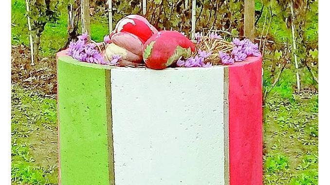 Magliano Alfieri: agricoltura simbiotica tra zucche e zafferano