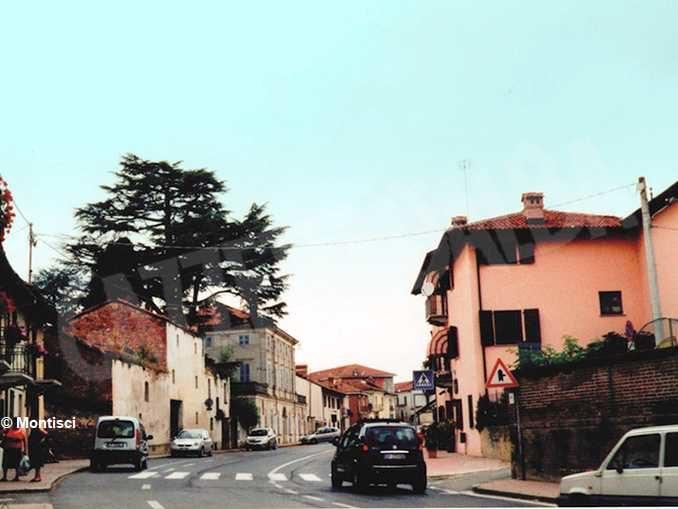 È stato abbattuto il secolare cedro del Libano della villa di via Bonissani 1
