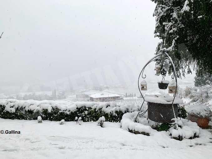 Le foto della prima nevicata stagionale 10