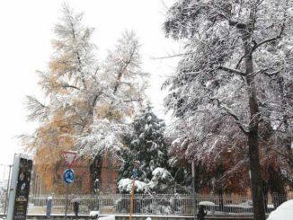Le foto della prima nevicata stagionale 1