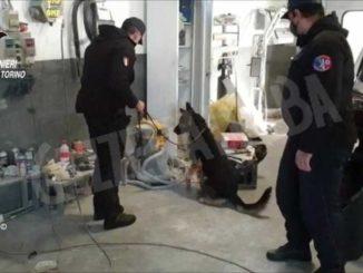 Pistole ed esplosivi in due stabilimenti torinesi: due persone arrestate