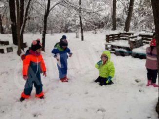 Le foto della prima nevicata stagionale 13