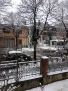 Il pruneto del santuario Madonna dei fiori saluta la neve che scende 2