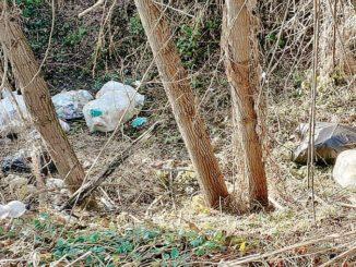 Sulla strada da Vezza a San Rocco scoperta l'ennesima discarica abusiva