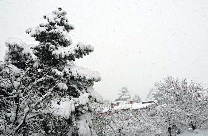 Le fotografie della prima neve del 2021 42