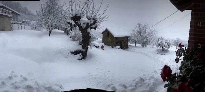 Le fotografie della prima neve del 2021 29