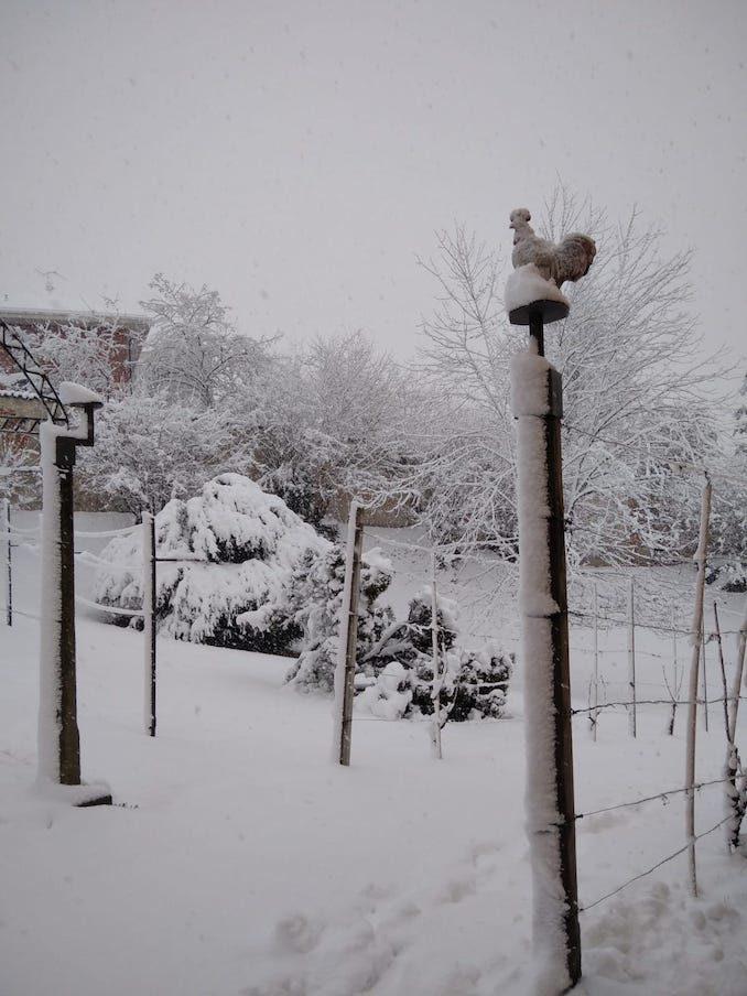 Le fotografie della prima neve del 2021 82