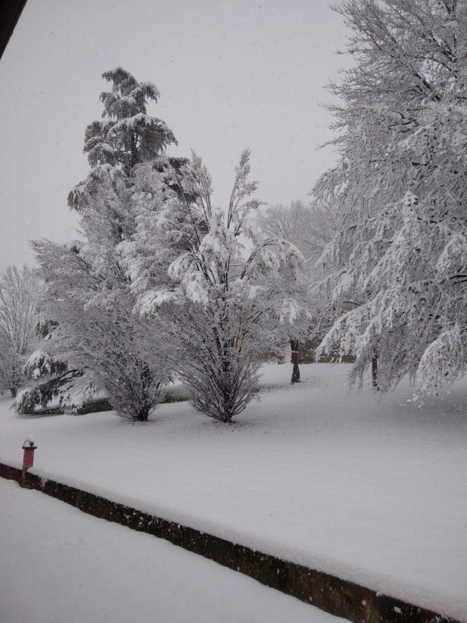 Le fotografie della prima neve del 2021 83