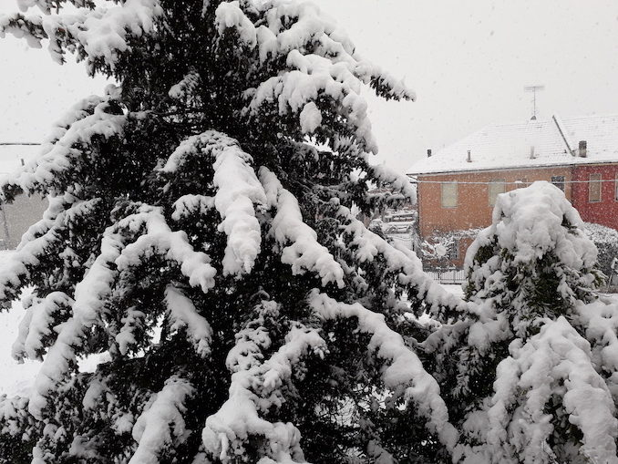 Le fotografie della prima nevicata del 2021 3