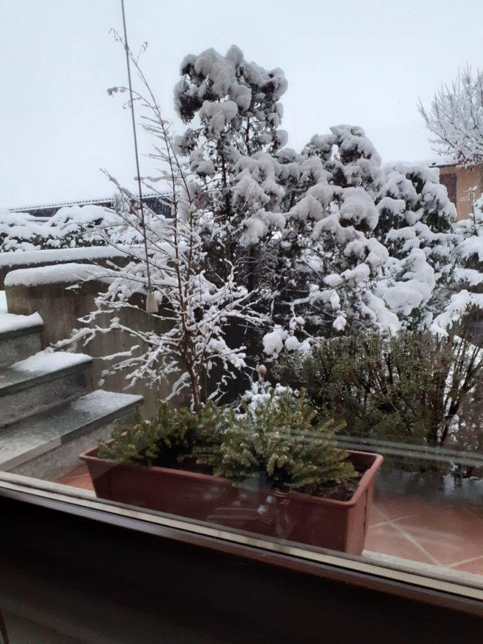 Le foto della prima nevicata del 2021