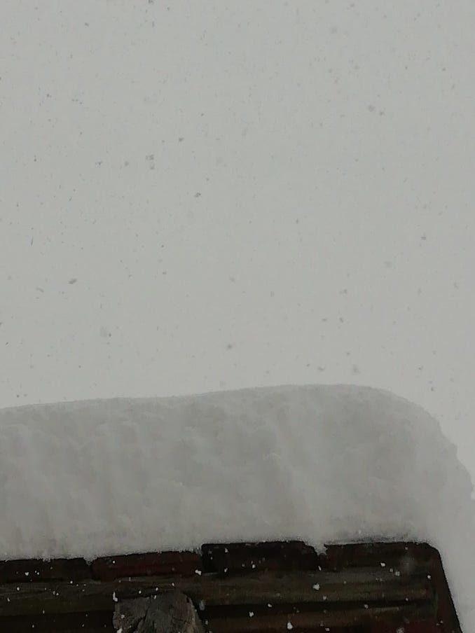 Le fotografie della prima neve del 2021 5