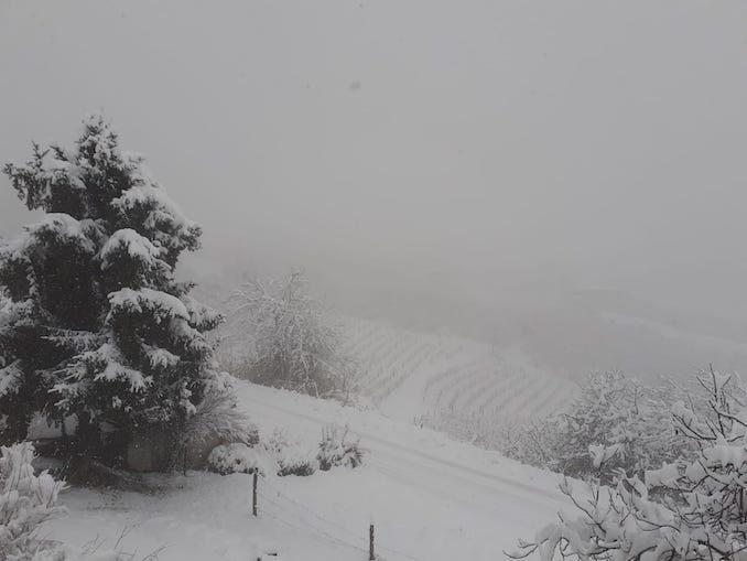 Le fotografie della prima neve del 2021 77