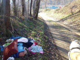 Baldissero d'Alba, discariche abusive su strada San Biagio-Cologne