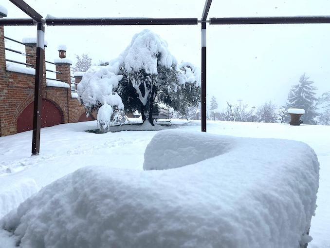 Le fotografie della prima neve del 2021 61