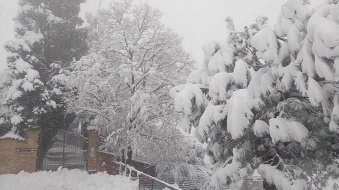 Le fotografie della prima neve del 2021 51
