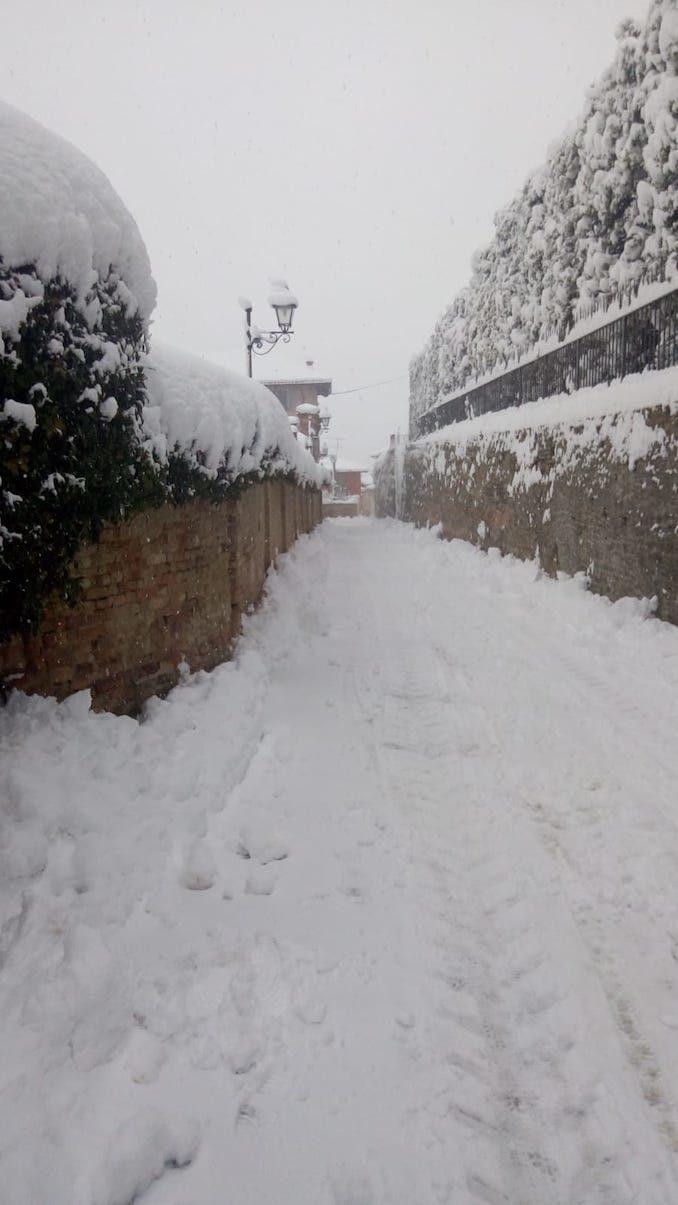 Le fotografie della prima neve del 2021 52