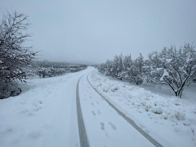 Le fotografie della prima neve del 2021 63