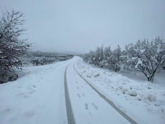 Le fotografie della prima neve del 2021 56