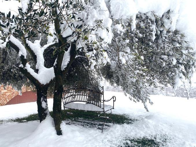 Le fotografie della prima neve del 2021 64