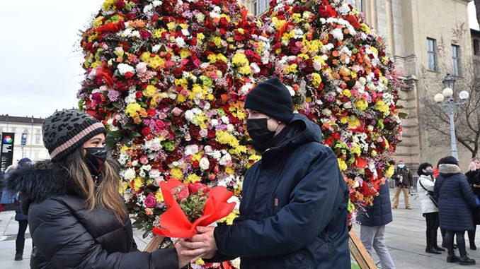 Torino, monumento con 3000 fiori per celebrare San Valentino