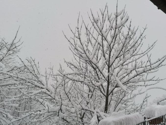 Le foto della prima nevicata del 2021 4