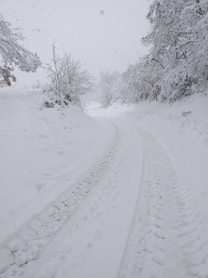 Le fotografie della prima neve del 2021 27