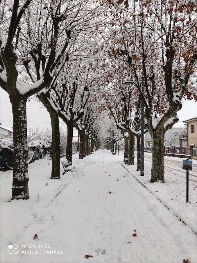 Le fotografie della prima neve del 2021 34