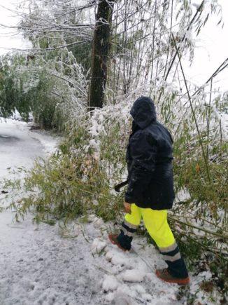 A Corneliano una nevicata fitta inaugura il nuovo anno, la Protezione civile interviene 1
