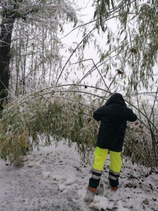 A Corneliano una nevicata fitta inaugura il nuovo anno, la Protezione civile interviene 3