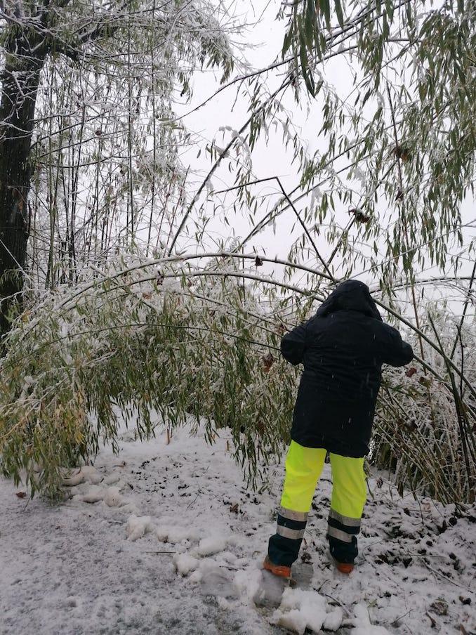 Nevicata a Corneliano 3