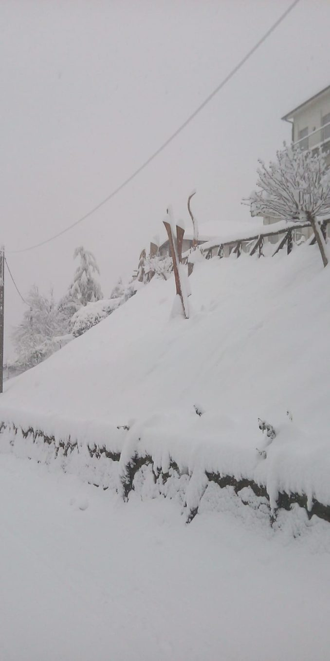 Le foto della prima nevicata del 2021 12