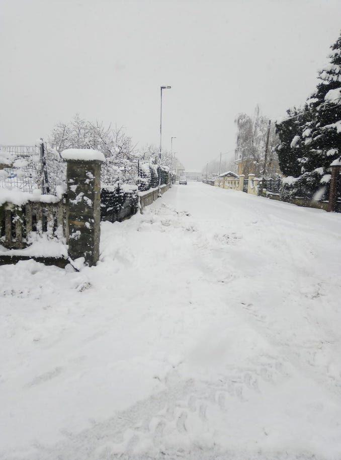 Le fotografie della prima neve del 2021 84