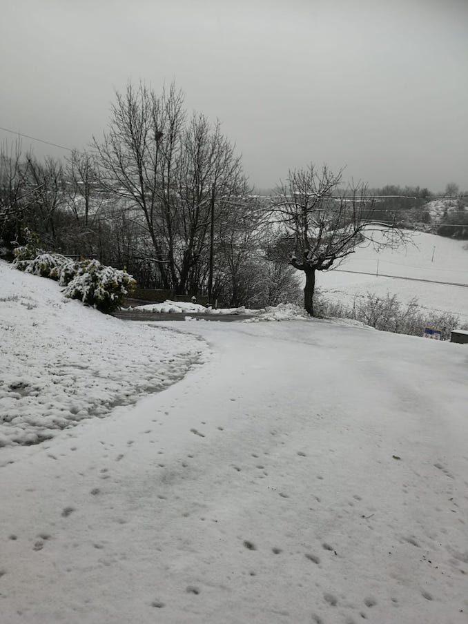 Le fotografie della prima neve del 2021 12