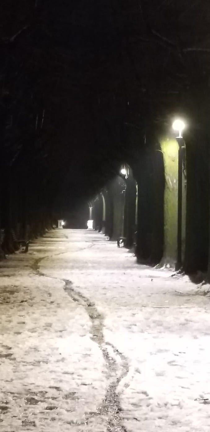 Le fotografie della prima neve del 2021 20