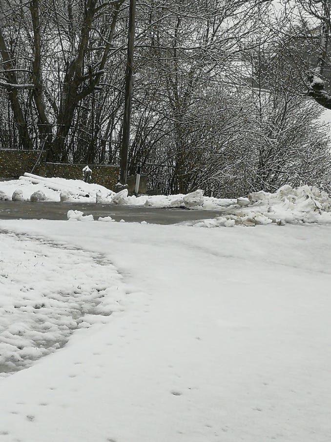 Le fotografie della prima neve del 2021 45