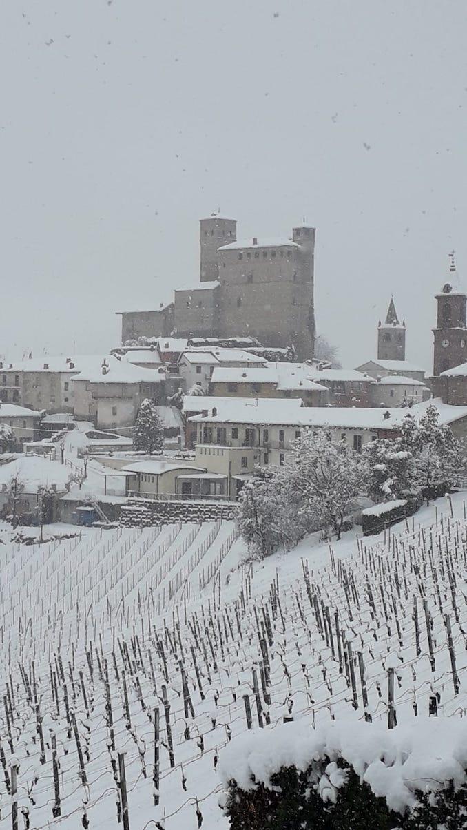 Serralunga d'Alba (castello) di Manuela Malanzani