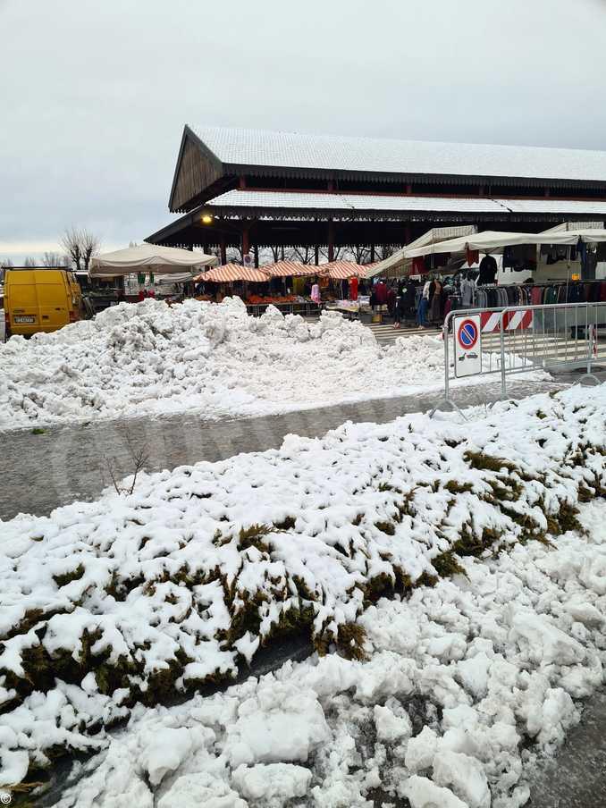 alba mercato neve_02