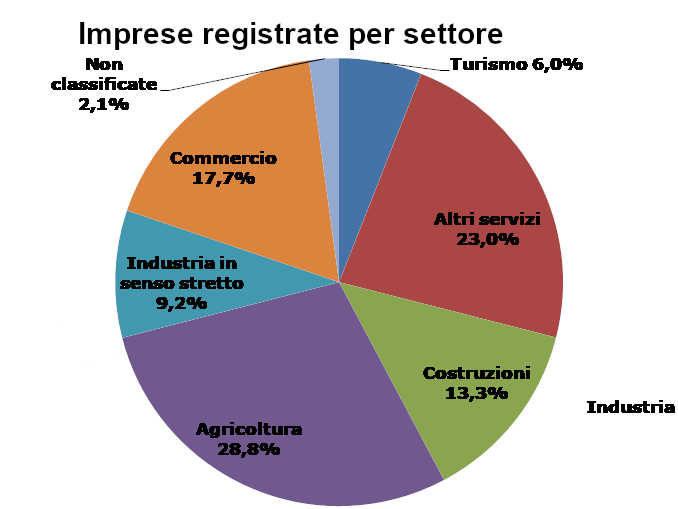 Camera di commercio Cuneo, in un anno perse 408 imprese 1
