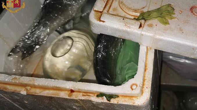 Sicurezza alimentare, 220 kg cibi sequestrati a Torino